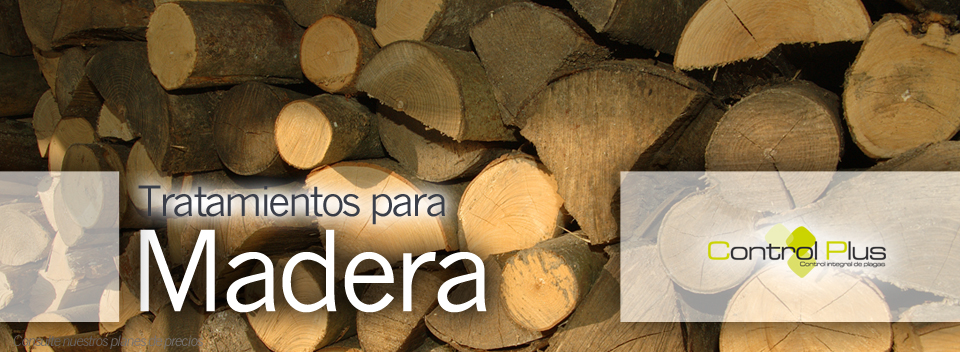 Banner-madera-Web-Control-Plus